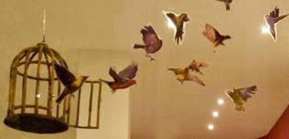 """""""La paloma Mari Paz""""  para el taller Canciones de Cuento"""
